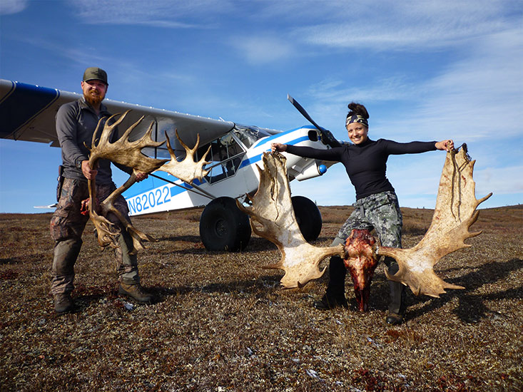 Alaska self-guided caribou hunts