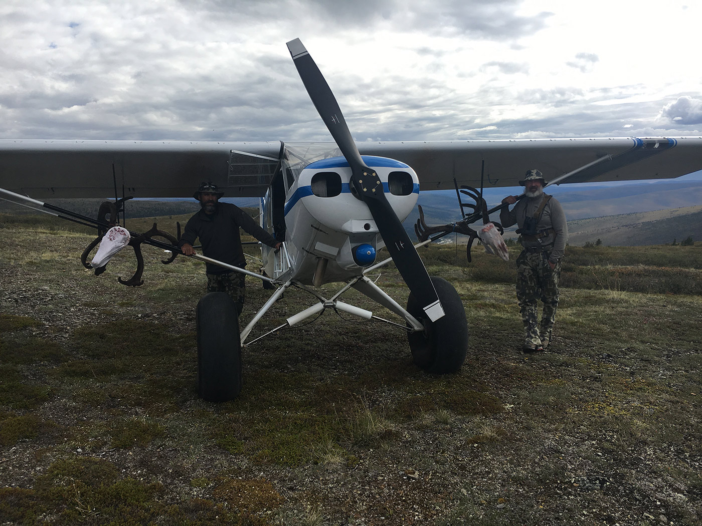 Caribou hunts loading in the Super Cub