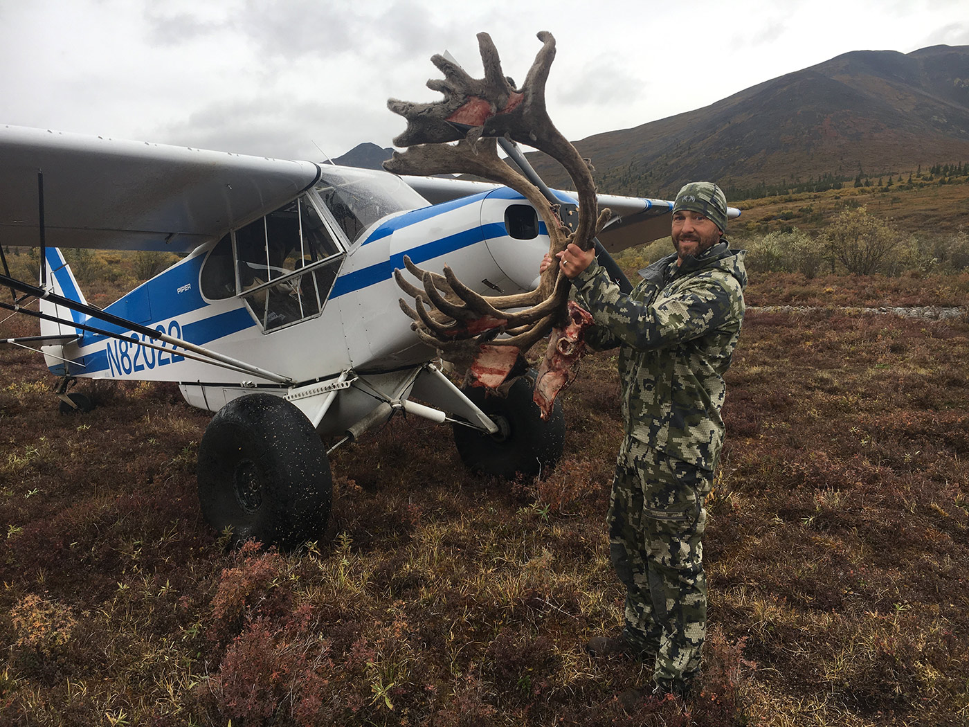 Quality caribou hunts