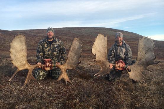 Alaska self guided hunts in tok fairbanks wrangells alaska moose hunt solutioingenieria Gallery
