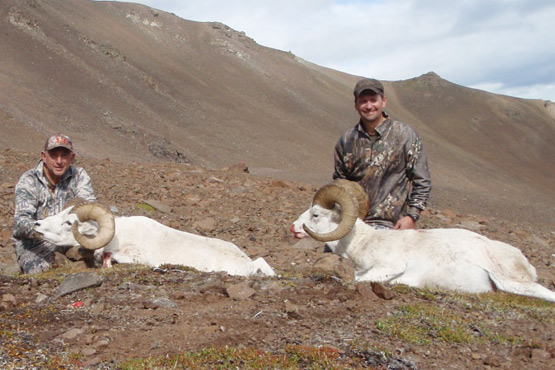 Alaska Sheep Hunt