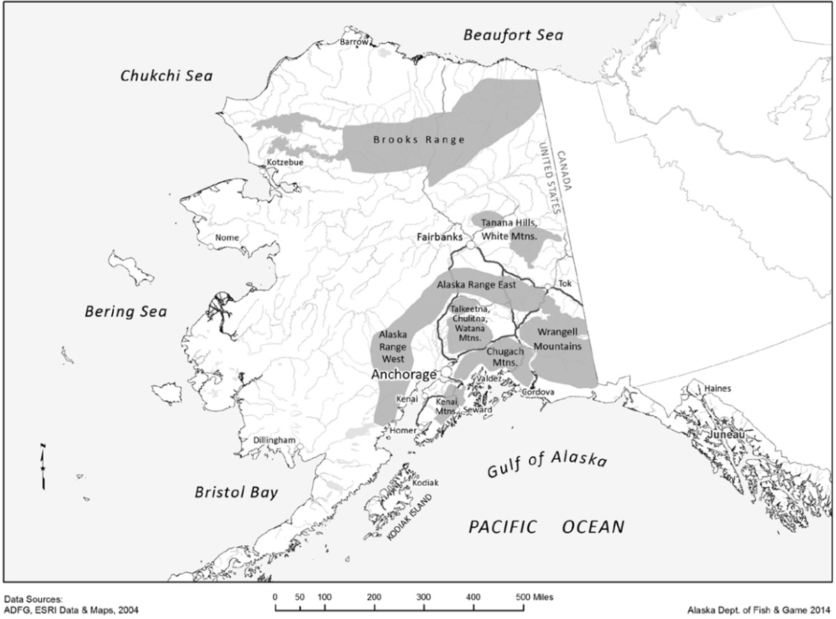 Alaska Sheep Range Map